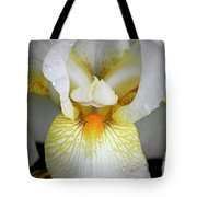 White Iris Study No 1 Tote Bag