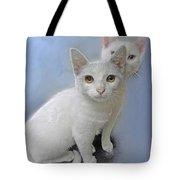White Kittens Tote Bag