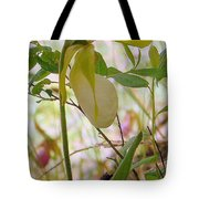 White Lady Slipper Tote Bag
