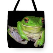 White-lipped Tree Frog Tote Bag
