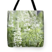 White Lupines Tote Bag
