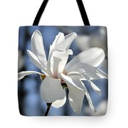 White Magnolia  Tote Bag by Elena Elisseeva