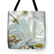 White Magnolia Tree Flower Art Prints Magnolias Baslee Troutman Tote Bag