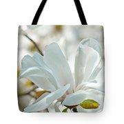 White Magnolia Tree Flower Art Prints Magnolias Baslee Troutman Tote Bag