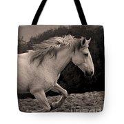 White Mare Gallops #1 -  Close Up Sepia Tote Bag