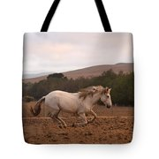 White Mare Gallops #1 - Panoramic Brighter Tote Bag
