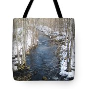 White Mill Park - Winter 2 Tote Bag