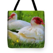 White Muscovy Ducks Tote Bag