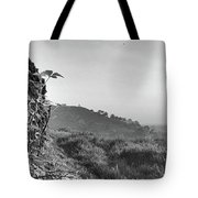 White Nancy At Sunset Tote Bag