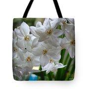 White Narcissi Spring Flower 2 Tote Bag