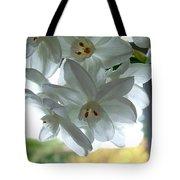 White Narcissi Spring Flower Tote Bag