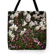 White Narcissus With Pink English Daisies In A Spring Garden Tote Bag