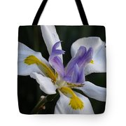 White Orchid With Yellow And Purple Tote Bag