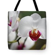 White Orchids 2 Tote Bag