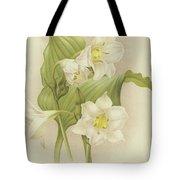 White Orchids   Eucharis Sanderiana Tote Bag