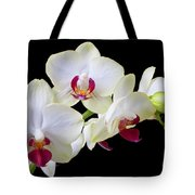 White Orchids Tote Bag by Garry Gay