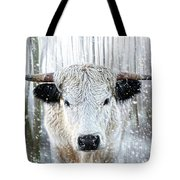 White Park Cattle In The Snow Tote Bag