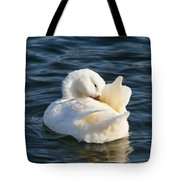 White Pekin Duck In Blue Water Preening Tote Bag