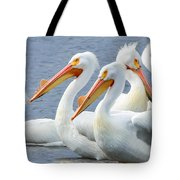 White Pelicans At Nelson Lake Tote Bag