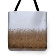 White Pelicans Fly Over Reed Bed On Lake  Tote Bag
