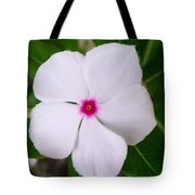 White Periwinkle Flower 1 Tote Bag