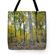 White Pine Hollow Tote Bag