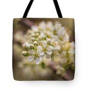 White Plum Blossom Tote Bag