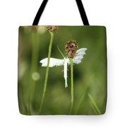 White Plume Moth, Tote Bag