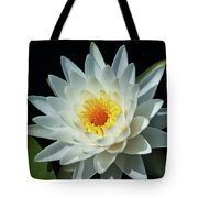 White Pond Lily Tote Bag
