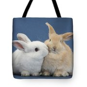 White Rabbit And Sandy Rabbit Tote Bag