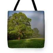 White Rainbow Tote Bag