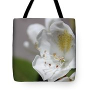 White Reaching Out Tote Bag