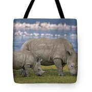 White Rhino Mother And Calf Grazing Tote Bag by Ingo Arndt