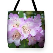 White Rhododendron Flowers With A Purple Fringe Tote Bag