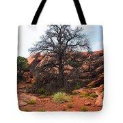 White Rim Overlook Trail Tree Tote Bag