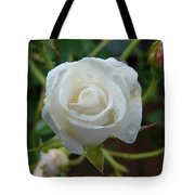 White Rose After Rain 2 Tote Bag