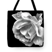 White Rose Aglow Tote Bag