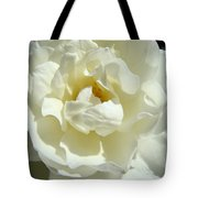 White Rose Art Prints Summer Sunlit Roses Baslee Troutman Tote Bag