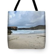 White Sandy Deserted Beach On The East Coast Of Aruba Tote Bag