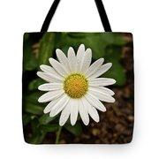 White Shasta Daisy In The Rain Tote Bag