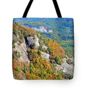 White Side Mountain Fool's Rock In Autumn Vertical Tote Bag