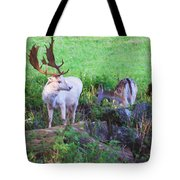 White Stag And Hind Tote Bag