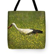 White Stork Looking For Frogs Tote Bag