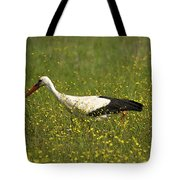 White Stork Looking Fr Frogs Tote Bag