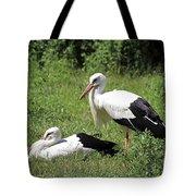 White Storks Tote Bag by Teresa Zieba