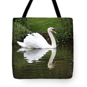 White Swan In Belgium Park Tote Bag
