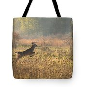 White Tail Morning Tote Bag