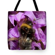 White-tailed Bumblebee On Southern Marsh Orchid Tote Bag