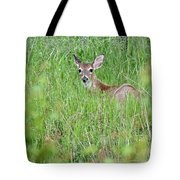 White-tailed Deer Bedded Down In Tall Grass Tote Bag