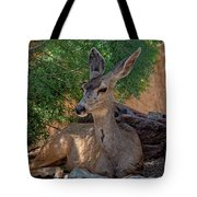 White-tailed Deer H1829 Tote Bag